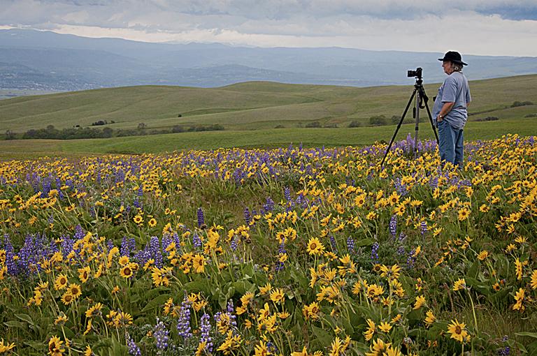 Karen McClymonds - Dalles Mountain