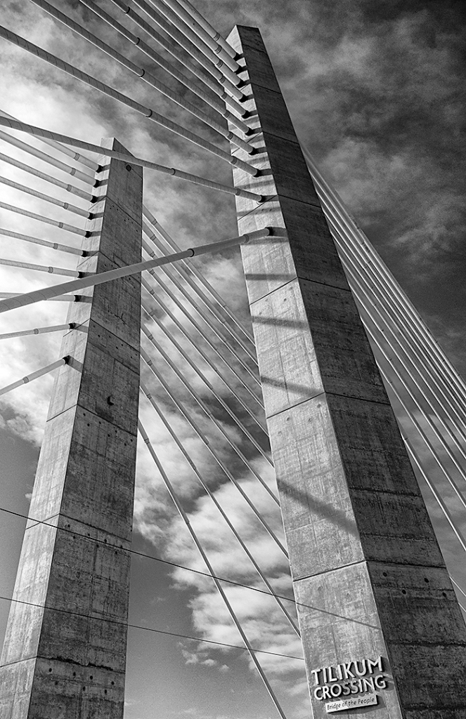 "Third Place: ""New Bridge"" Copyright Mike Burgess"