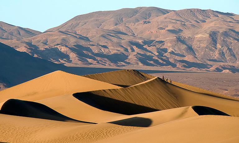 Ross Kaplan - Dunes